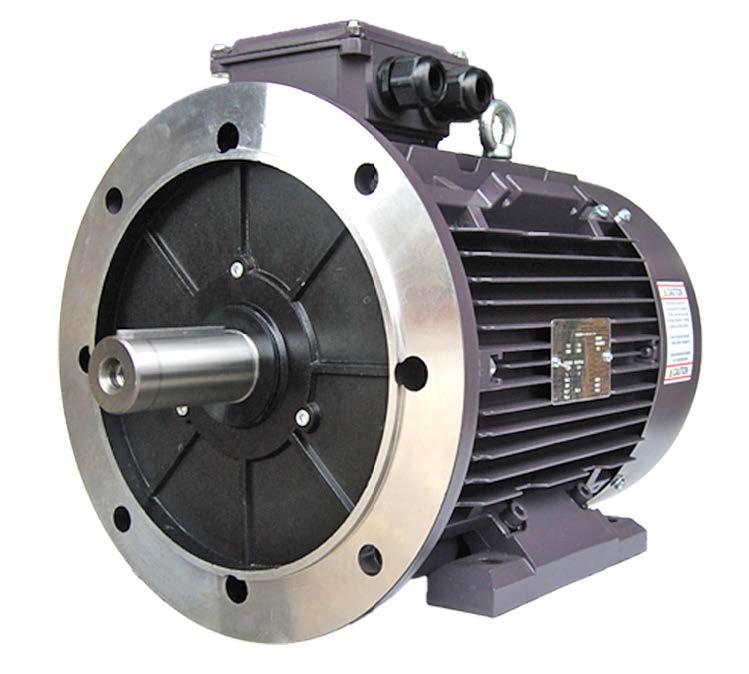 BL3-AL-TF-71B35-2-B-D- 75, 3/4 HP,  55 kW, 208-230/460V, 2P (3600 RPM),  TEFC, Rigid Base B5 Flange, Cast Aluminum, 71 Frame, TECHTOP Metric IEC